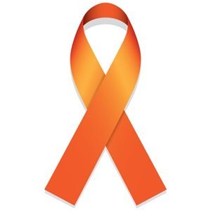 Multiple Sclerosis Foundation The Importance Of Ms